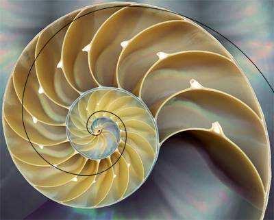旋转矩阵最优覆盖的数学原理