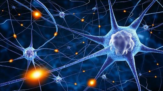 用大数据神经网络算法预测彩票的有趣探索